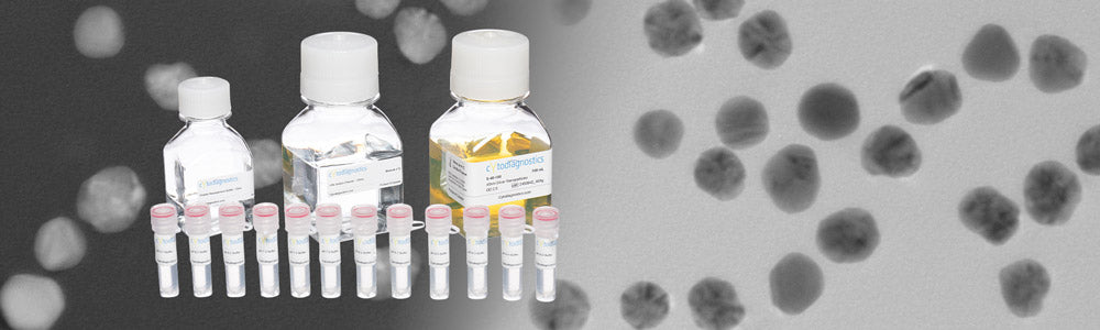 Banner Silver Nanoparticles