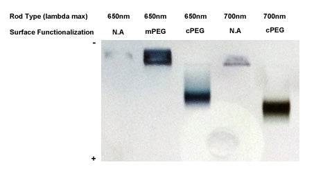 Gold NanoRods - PEGylation and Analysis by Gel Electrophoresis