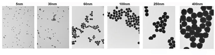Gold Nanoparticles TEM