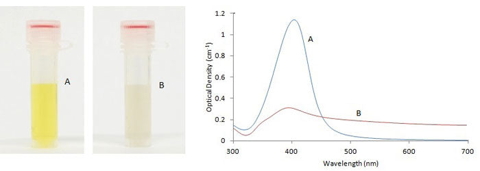 Silver Nanoparticles Aggregation - Effects on Absorption Spectrum