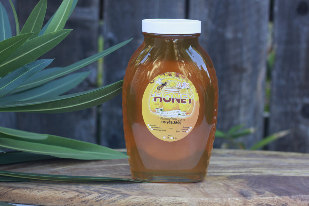 Orange Blossom Honey - Hawaiian Honey AT&S