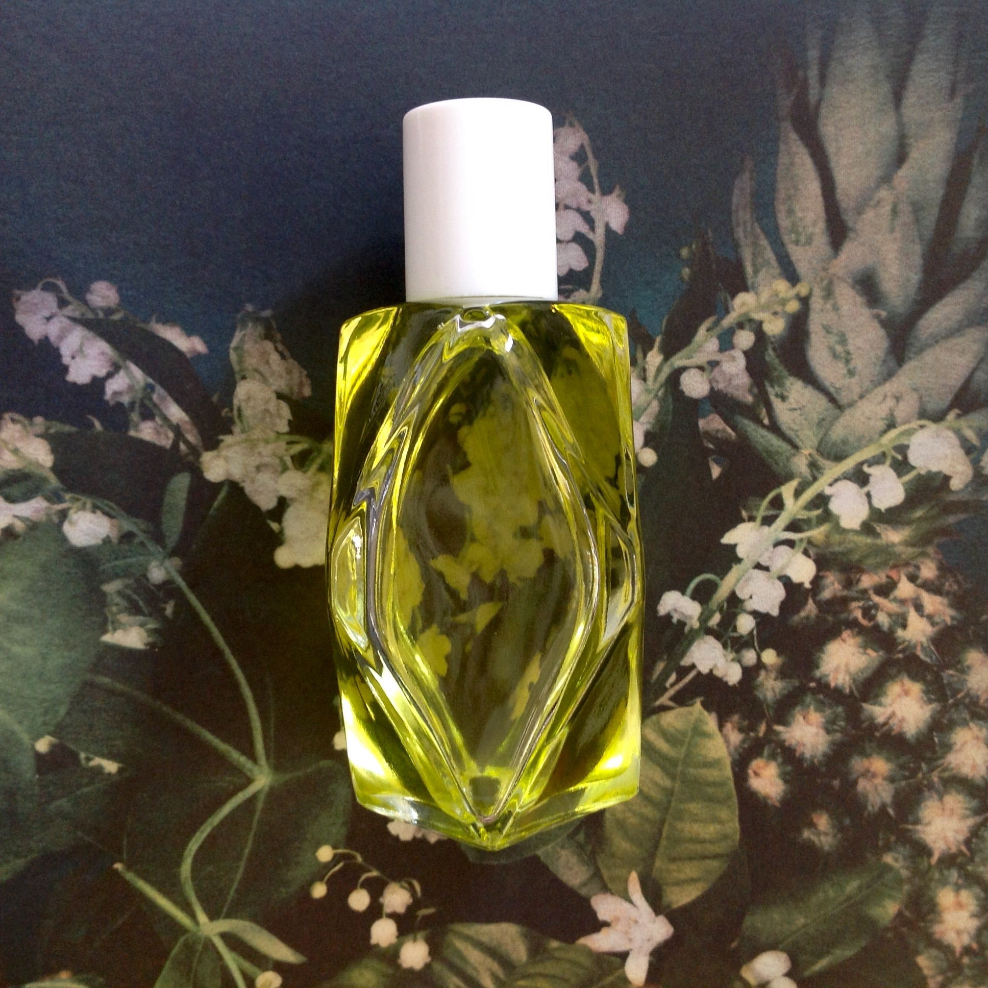 White Camelia Body Oil