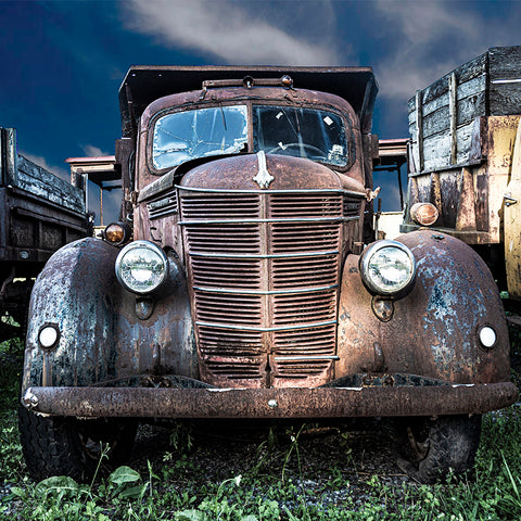 "Metal Print: ""Junkyard Blues"""