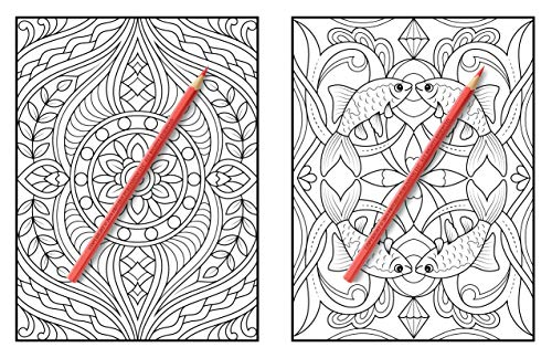 100 Amazing Patterns: An Adult Coloring Book with Fun, Easy, and Relaxing Coloring Pages - BEAN Ultra