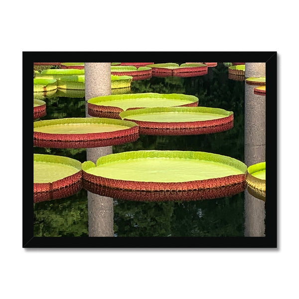 Flower Cake Framed Print - BEAN Ultra