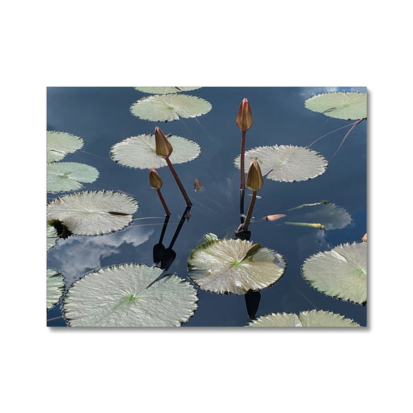 The Pond - Canvas Print Wall Art - BEAN Ultra