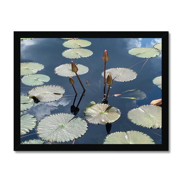 The Pond Framed Wall Art Print - BEAN Ultra