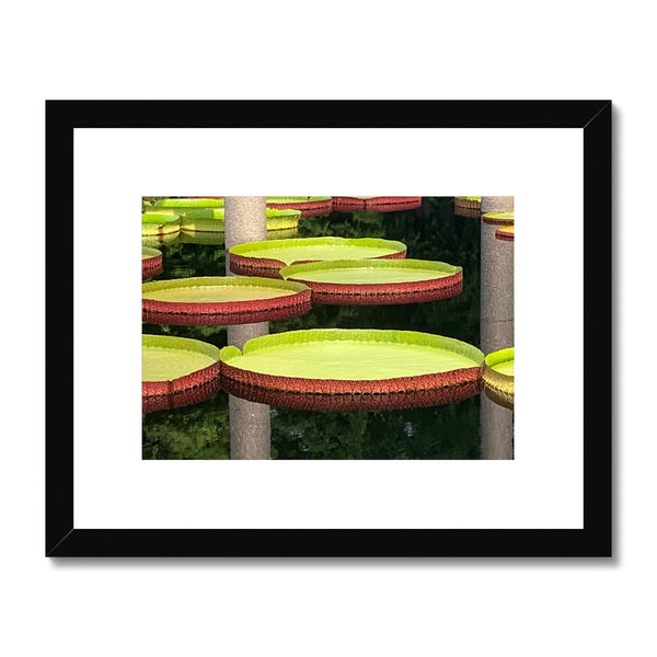 Flower Cake Framed & Mounted Print - BEAN Ultra