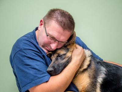 10 Tips for Coping with the Loss of a Pet