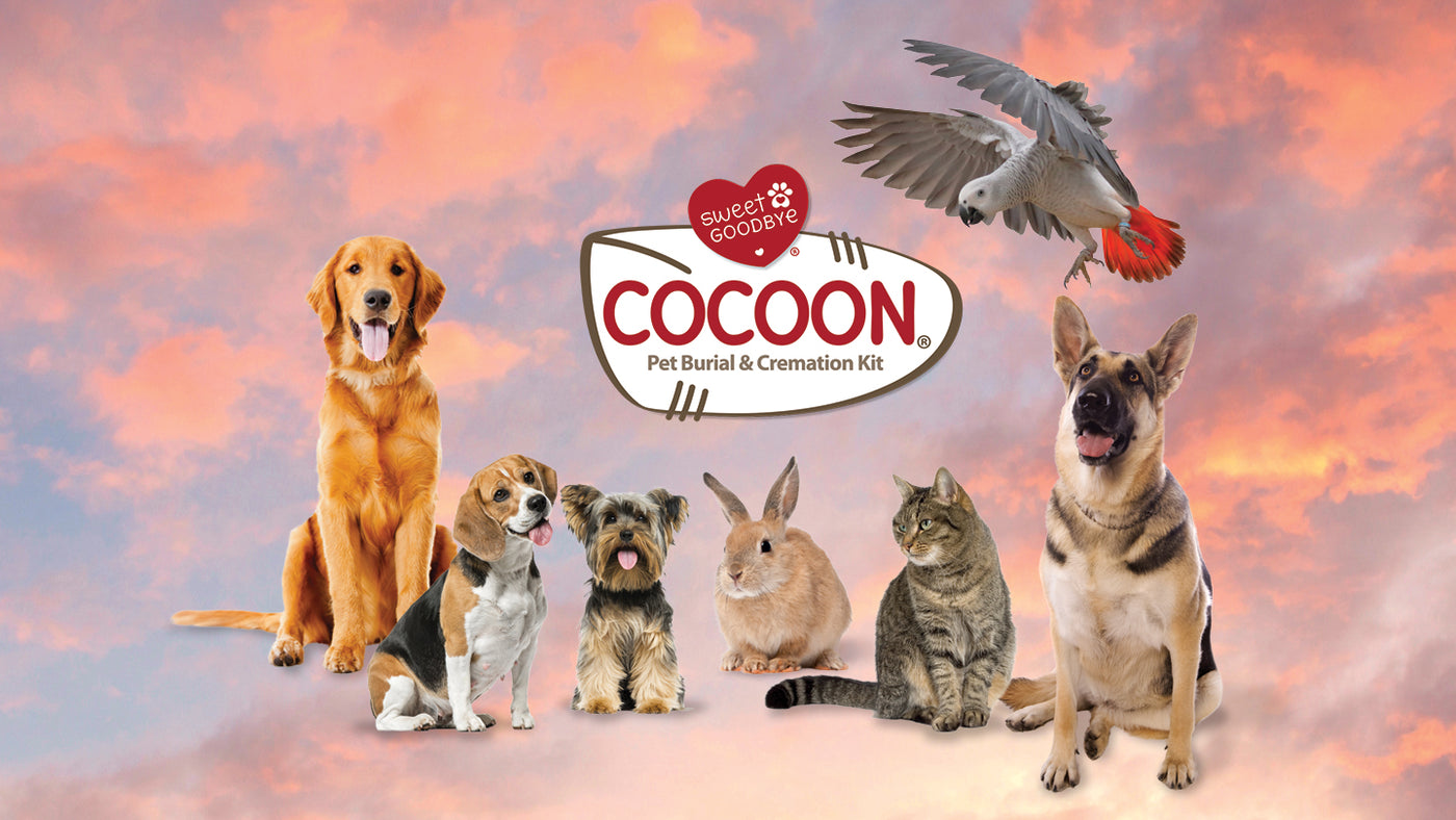 COCOON for All-Sized Pets