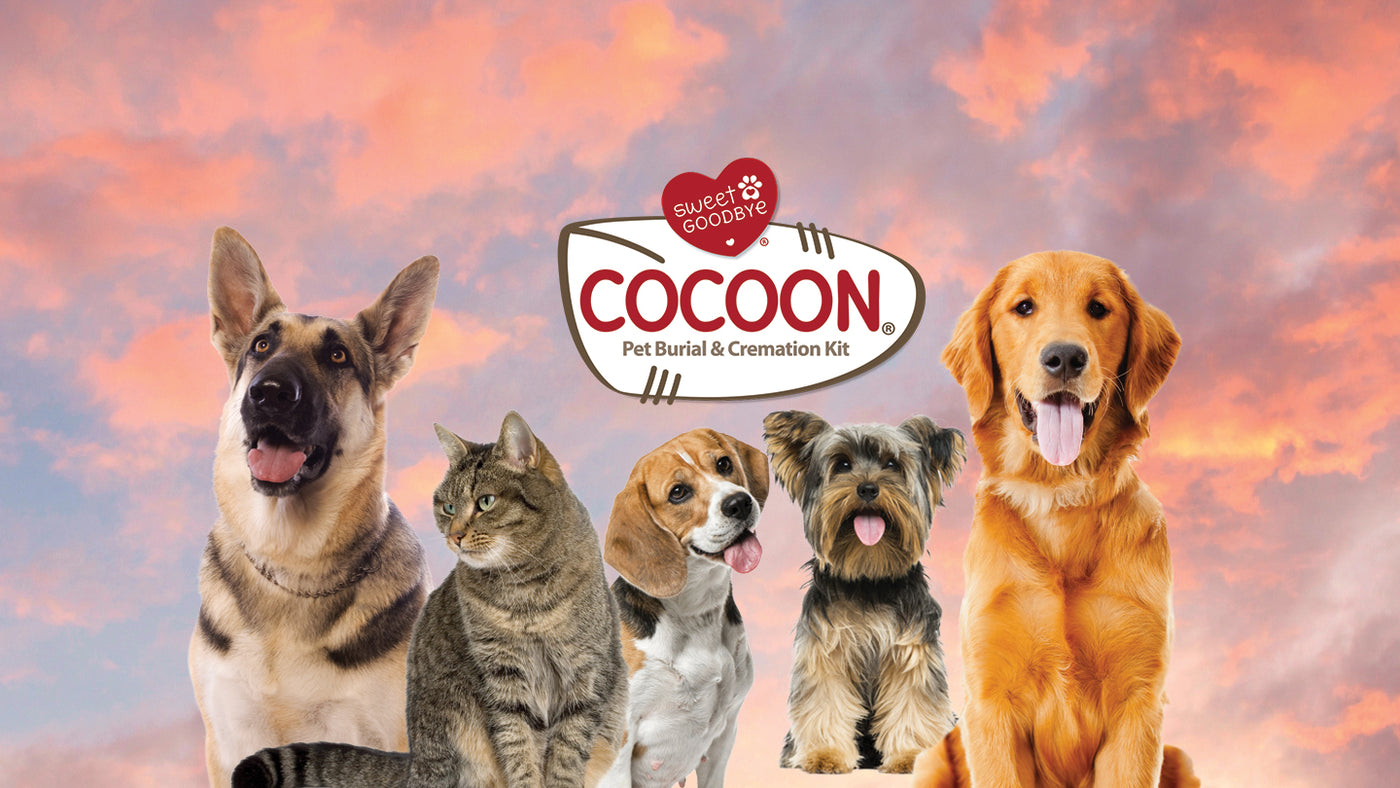 COCOON for Dogs and Cats