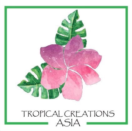 Tropical Creations Asia