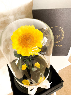 Everlasting Sunflower Dome - Forever Fleurs
