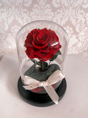 Forever Rose Dome - Mini