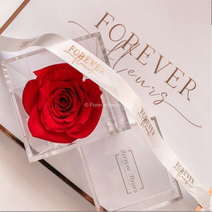 Single Acrylic Rose Box (FREE GIFT BOX!)