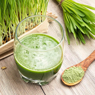 Synergy Organic Barley Grass Powder - 7 Life Changing Benefits