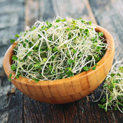 Broccoli Sprout Powder – Fight Cancer, Depression & More