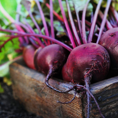 Beetroot Vitamins and Benefits: Ignite Your Body for the Race of Life