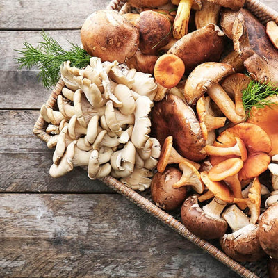 Mushroom Superfoods - Look, Feel & Become Your Best Self