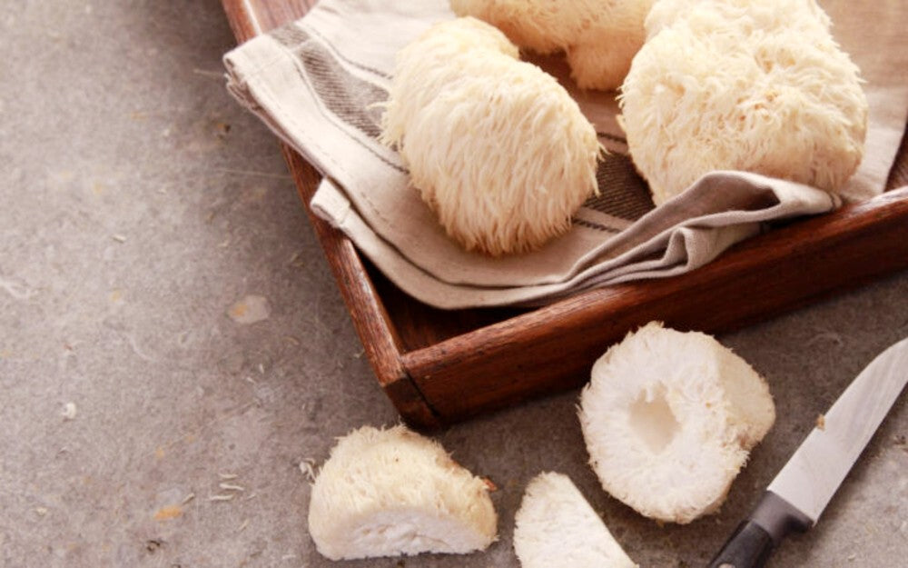 Lion's Mane Mushroom Anxiety - lifestyle