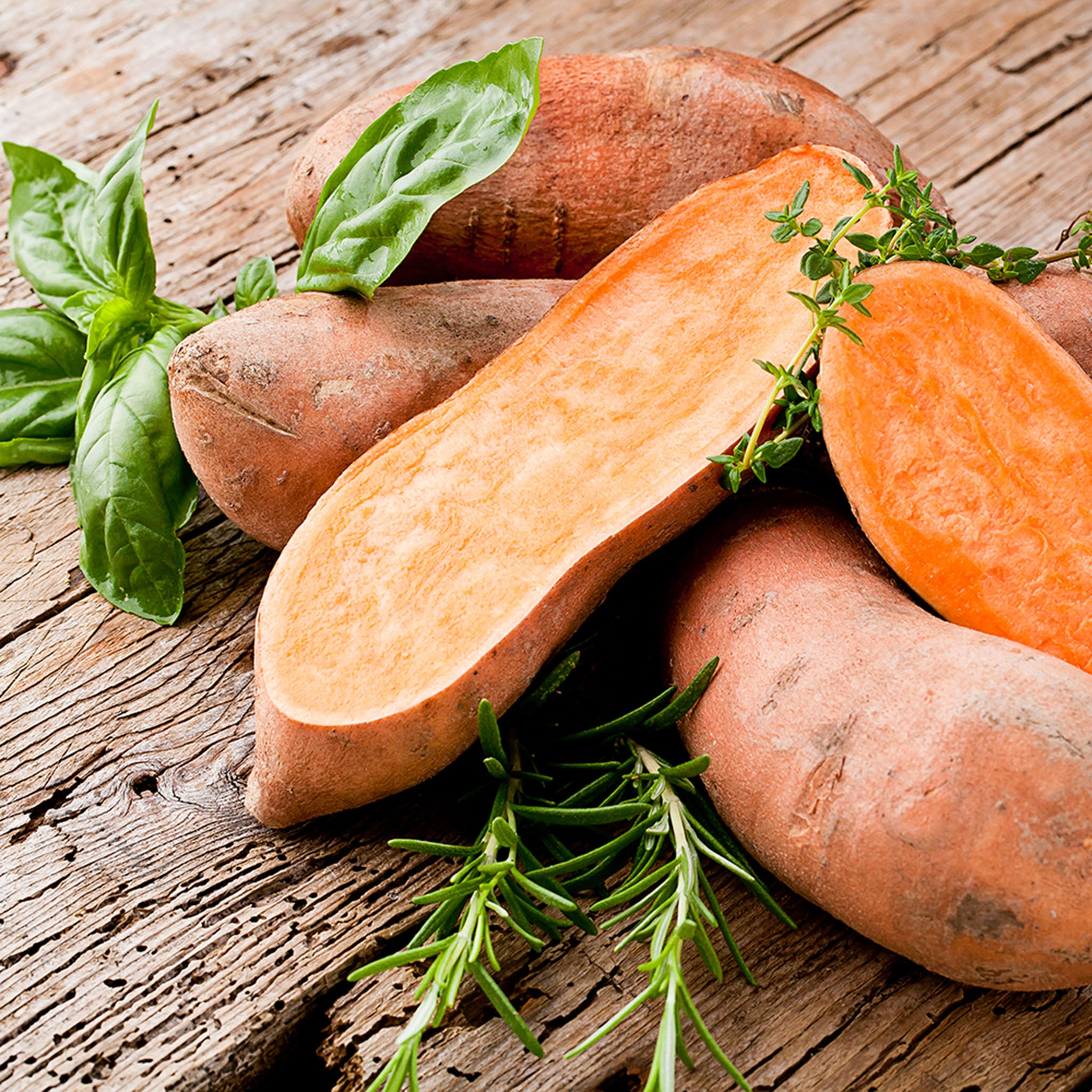 Sweet potatoes are a nutrition energy source