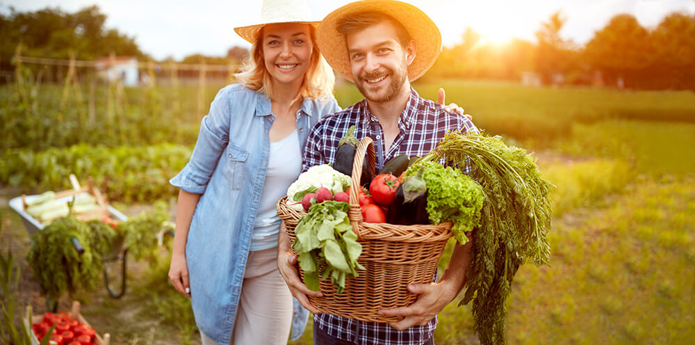The Importance of Organic Food in this Age and Time