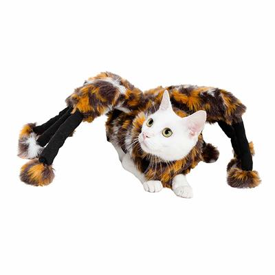 Spider Costume For Cats