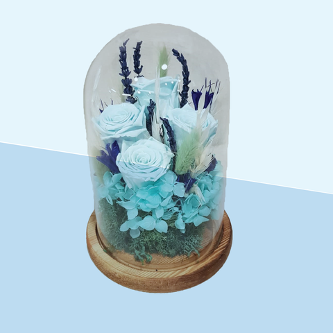 Everlasting flowers in glass domes-Blue