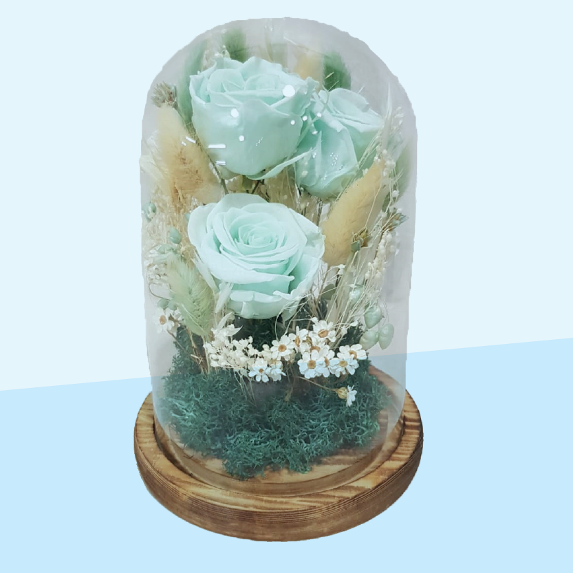 Everlasting flowers in glass domes-Mint