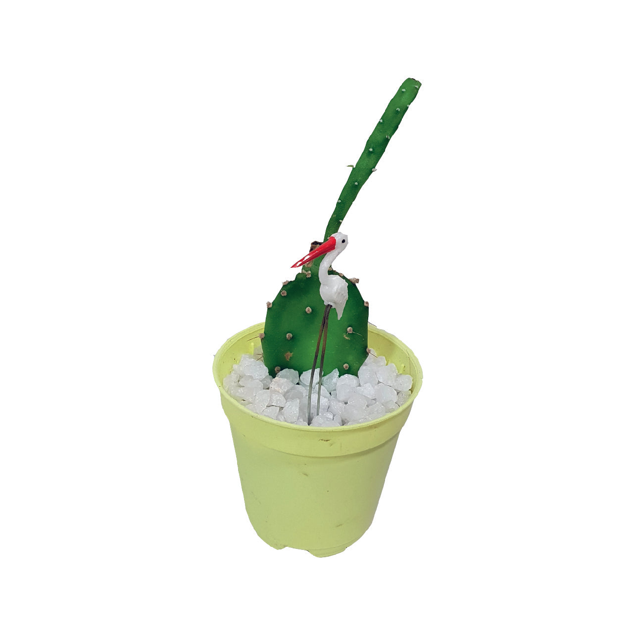 Plant Topper