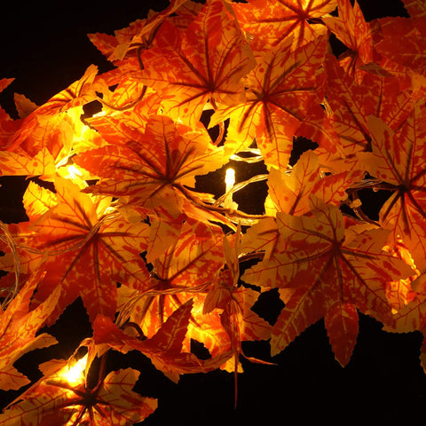 Maple Leaves String Lights