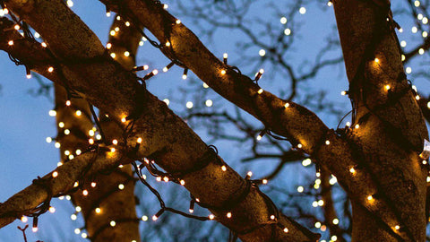 Solar Powered LED String Fairy Lights