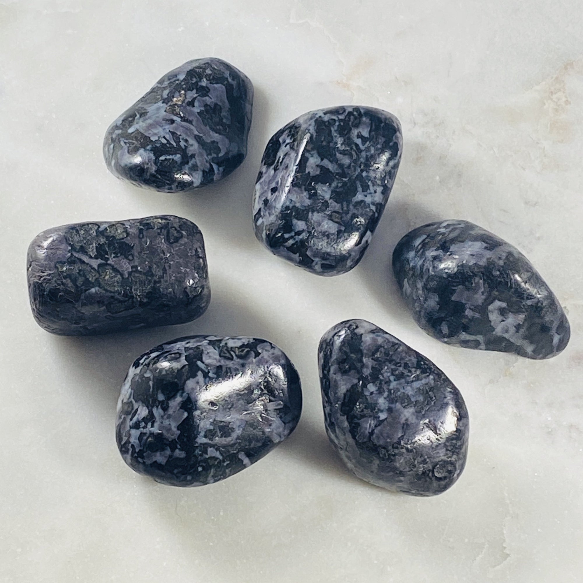 Indigo Gabbro (Mystic Merlinite) Tumbled Large