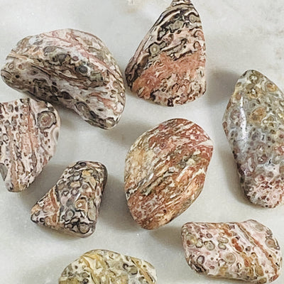 Leopardskin jasper tumbled stones for root chakra grounding