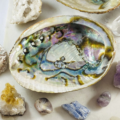 Abalone shell for sacred ceremonies