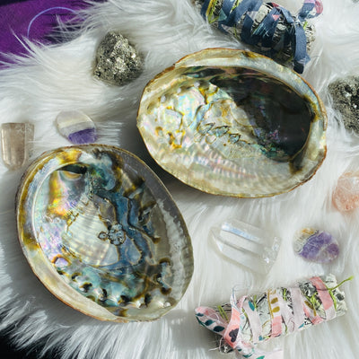 Unique abalone shells for crystal lovers