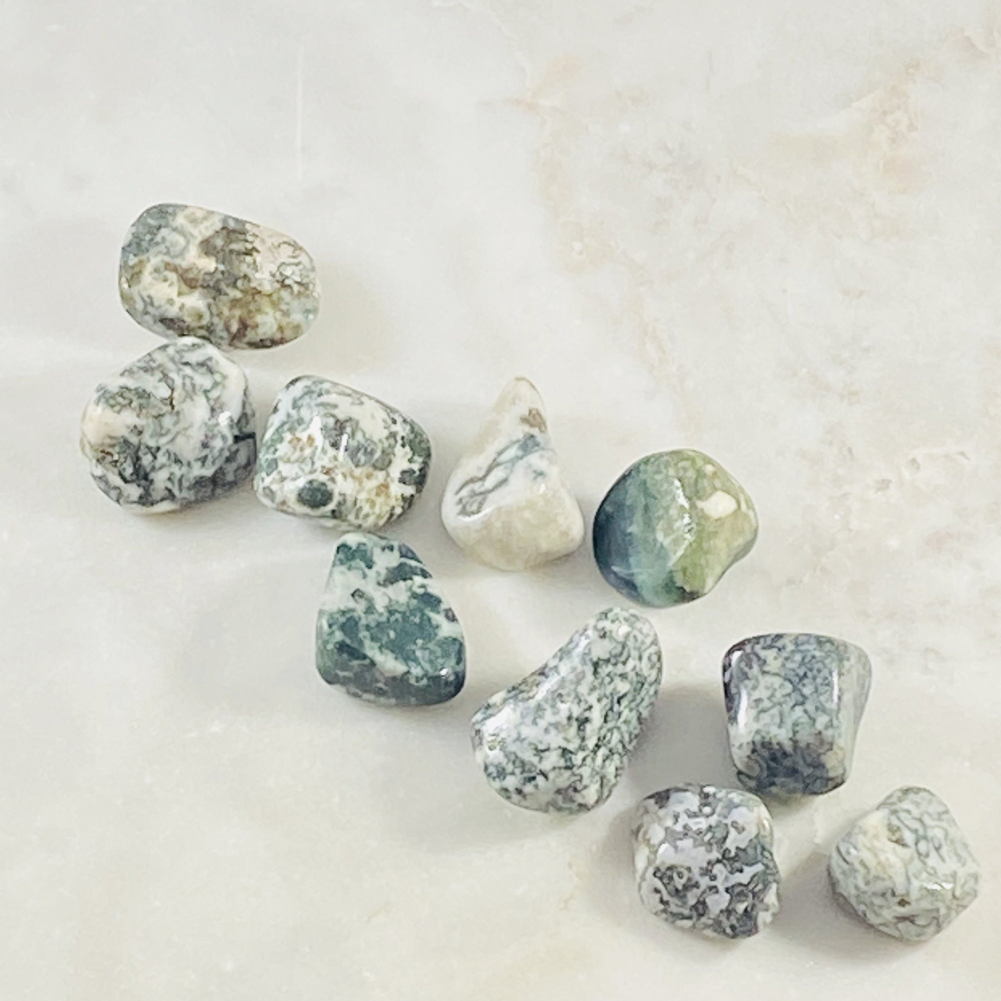 Tree agate tumbled stones Sarah Belle