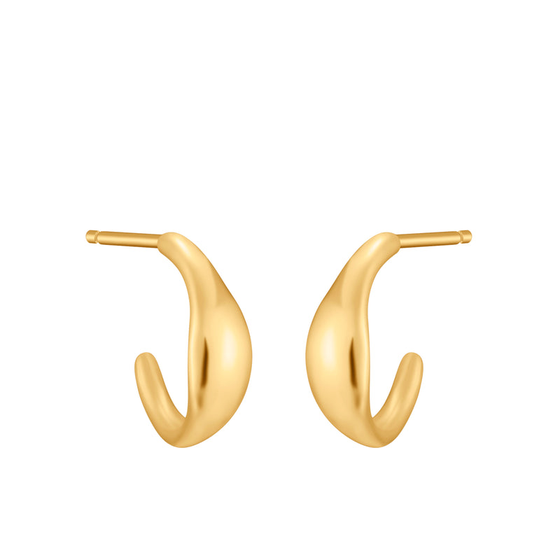 Yellow Gold Shiny Earrings