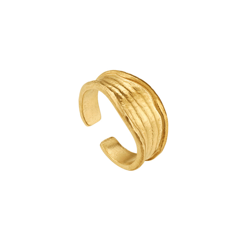 Golden Irregular Open Ring