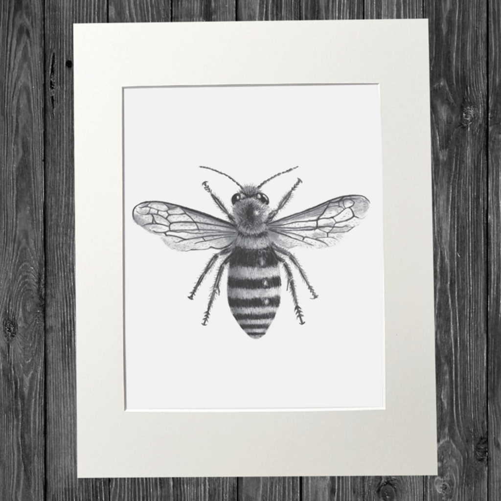 CATHY HAMILTON ART - Bee Print