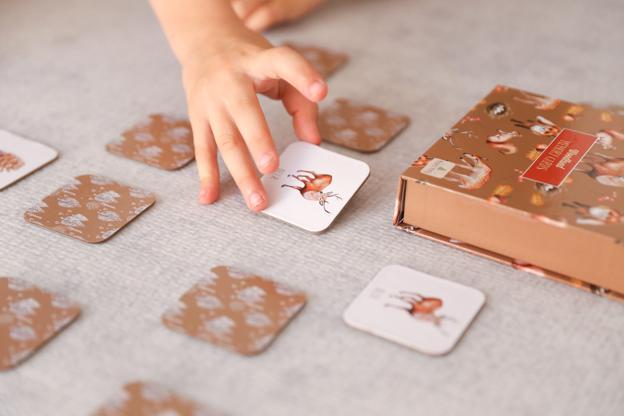 MODERN MONTY - Woodland Memory Card Game