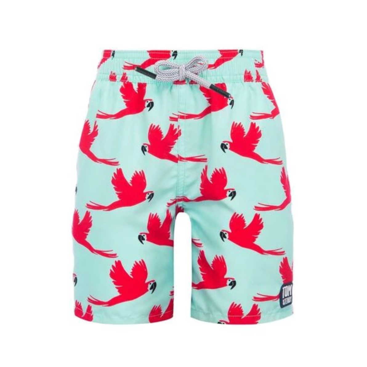 TOM & TEDDY - Boys Light Blue & Pink Parrot