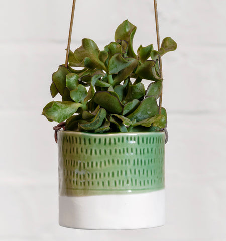 Hanging House Plant Pot - Pie Crust