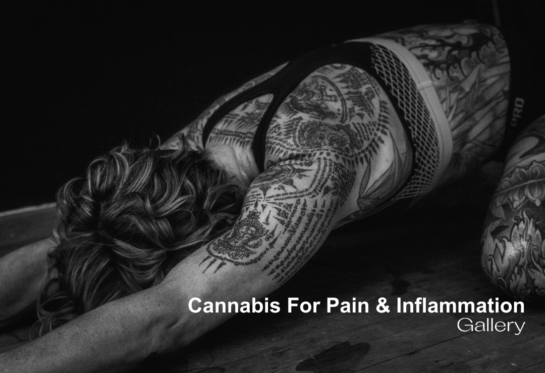 Cannabis For Pain and Inflammation