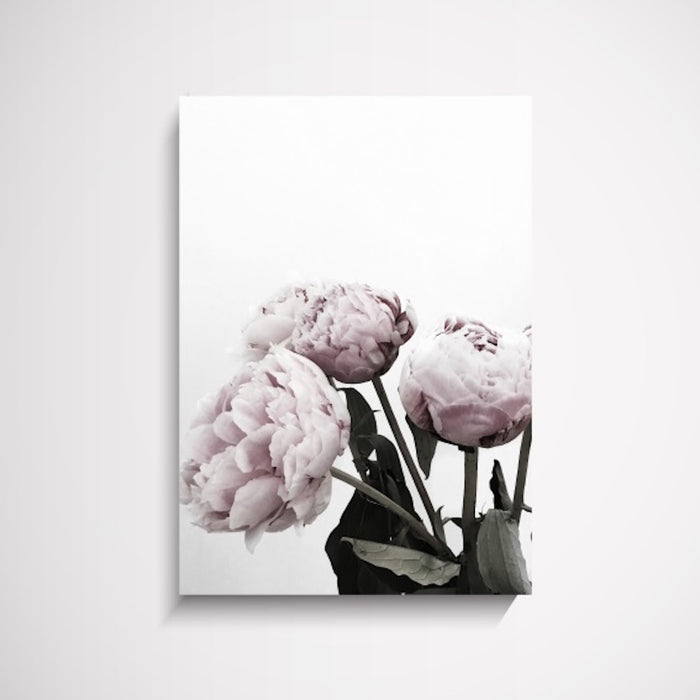 The Stables Peonies Flower Wall Art Print, Prints, Ozark Home
