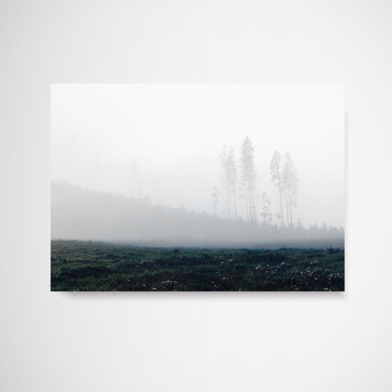 Wilderness Forest Mist Wall Art Print, Prints, Ozark Home
