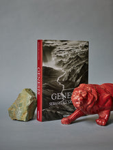 Load image into Gallery viewer, Sebastião Salgado. GENESIS XL Taschen