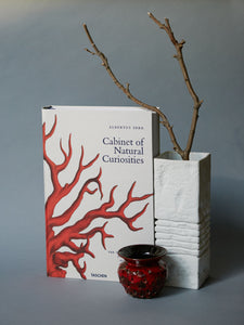 Albertus Seba. Cabinet of Natural Curiosities XL