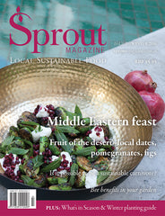 Middle East feast - Winter 2016