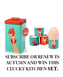Free subscription gift